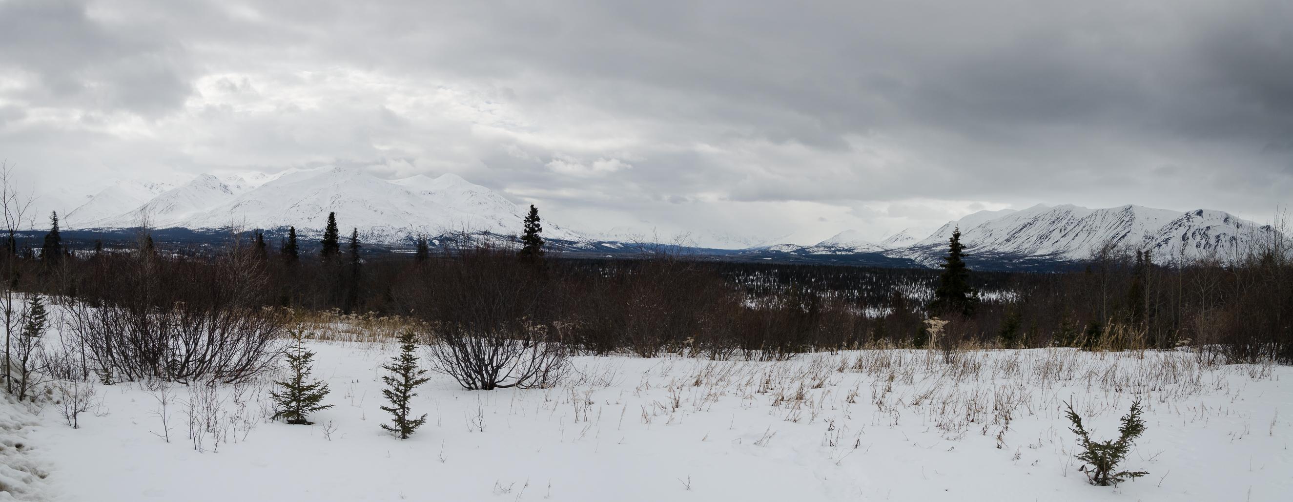 DSC_0816-Panorama
